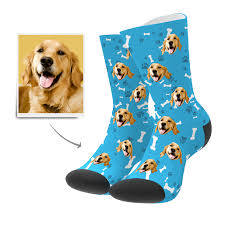 Exclusive customised 'dog promotional socks'